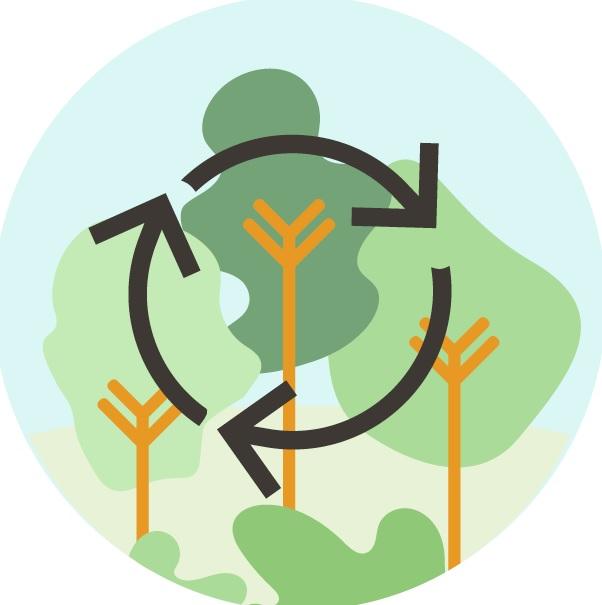 Mit Norisbank & Mastercard Bäume pflanzen